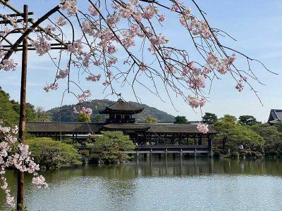 Sanctuaire de Heian Jingu 平安神宮