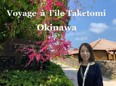 Île de Taketomi 竹富島