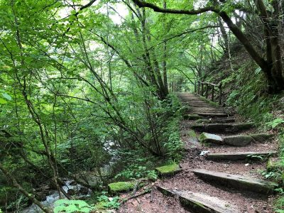 La route de Nakasendo 中山道