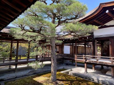 Temple Ninna-ji 仁和寺